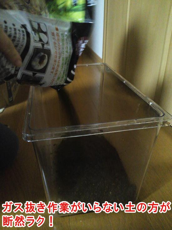 カブトムシの土をそのままケースに投入