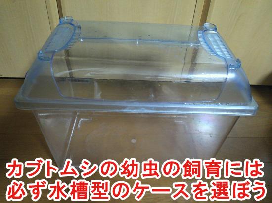 カブトムシの幼虫の飼育に使う水槽型のケース