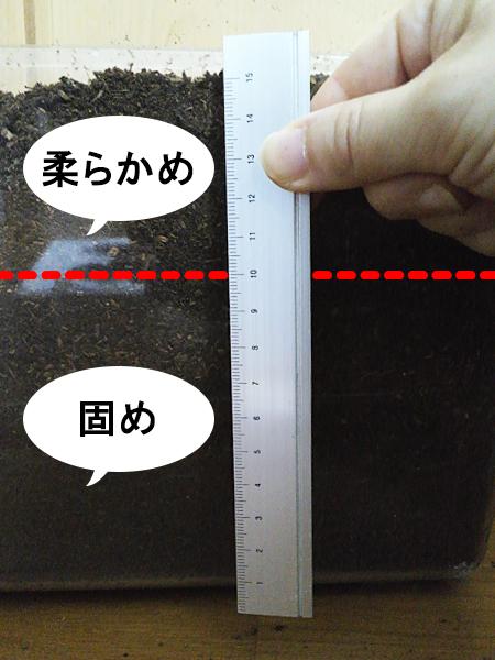 カブトムシが蛹になる前、最後に土を交換する方法