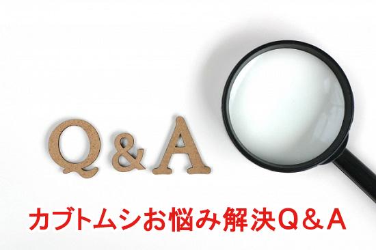 カブトムシお悩み解決Q&A