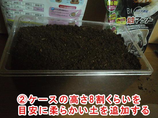 蛹室を作りやすい環境に整える②