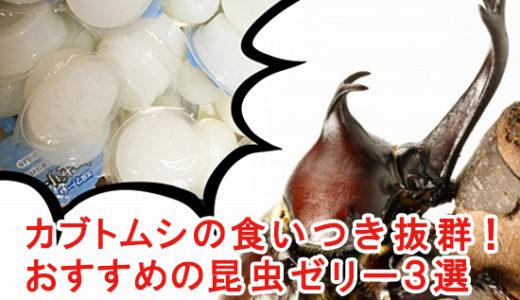 カブトムシの餌には昆虫ゼリーがベスト! おすすめ3選を紹介