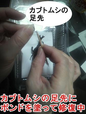 バラバラになったカブトムシの体を修復