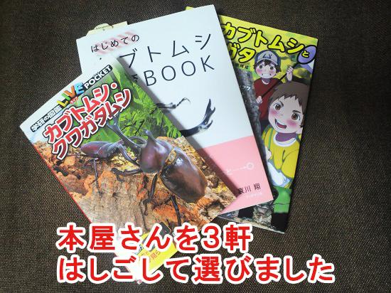 子供向けのカブトムシの飼育本