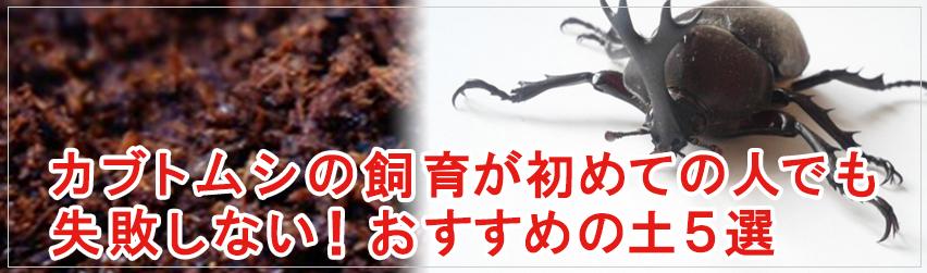 カブトムシの飼育が初めての人でも失敗しない!おすすめの土5選